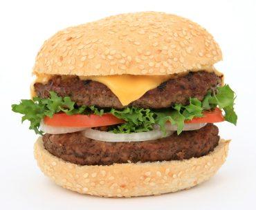 burger-cheese-dinner-161674 (1)
