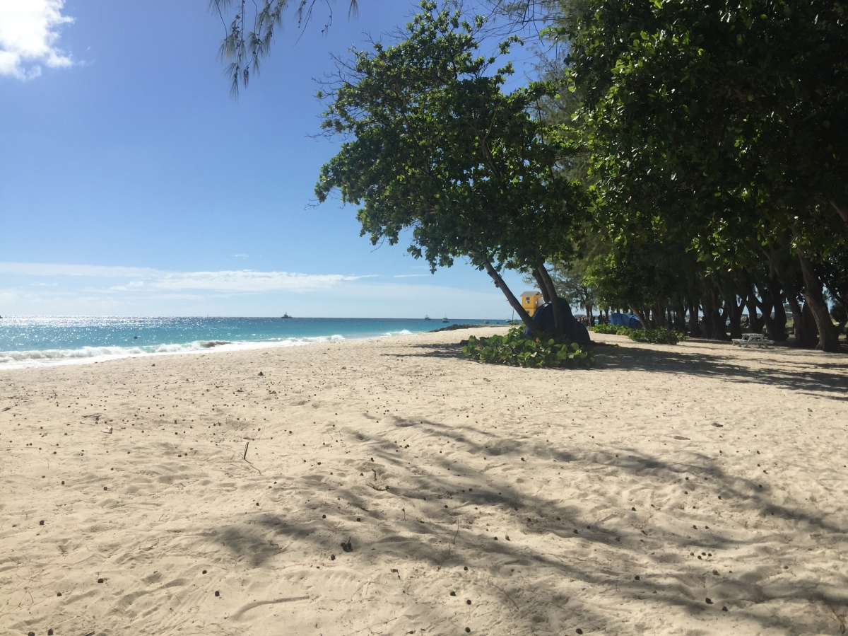Beaches of Barbados – Miami (Enterprise) Beach